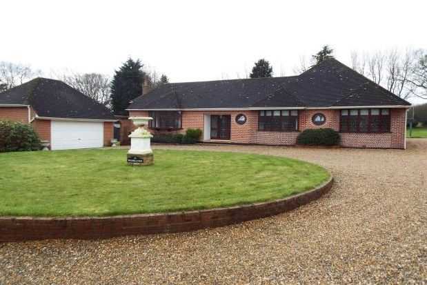 Thumbnail Detached bungalow to rent in Ingrave Road, Brentwood