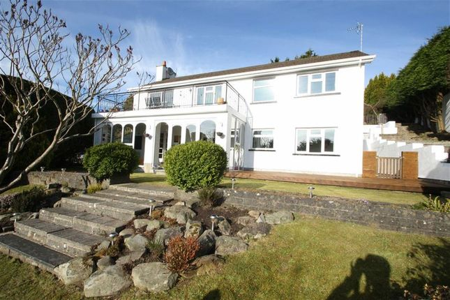 Thumbnail Property for sale in Millhill Drive, Ballynahinch, Down