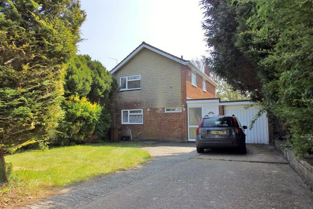 Thumbnail Detached house for sale in Burton Road, Eastbourne