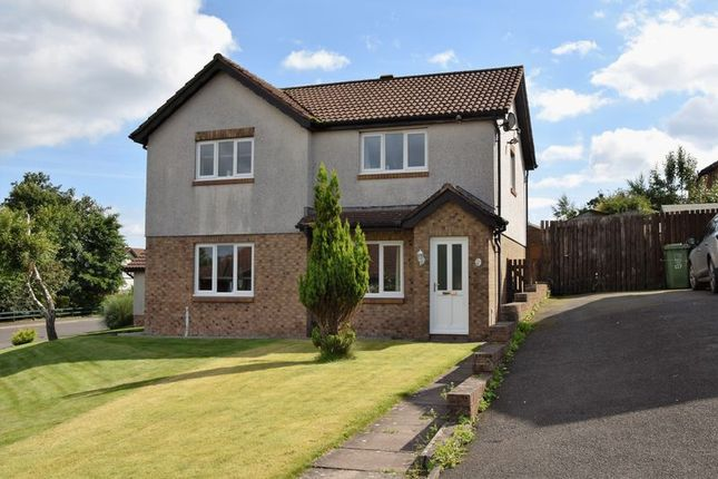 Thumbnail Semi-detached house to rent in Berkeley Grange, Carlisle