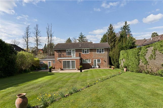Thumbnail Detached house to rent in Pilgrims Way, Guildford, Surrey
