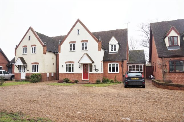 Thumbnail Detached house for sale in Chestnut Walk, Stanford-Le-Hope