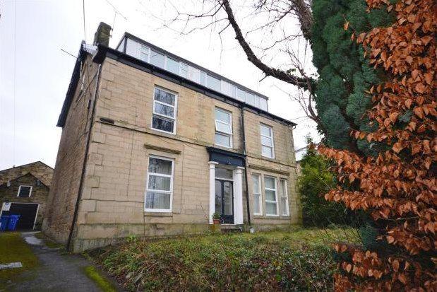 Studio to rent in 87 Norfolk Road, Sheffield S2