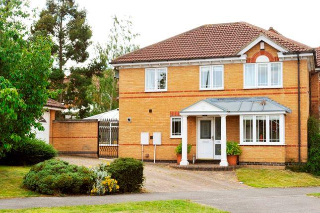 Thumbnail Detached house to rent in Trefoil Drive, Killinghall, Harrogate