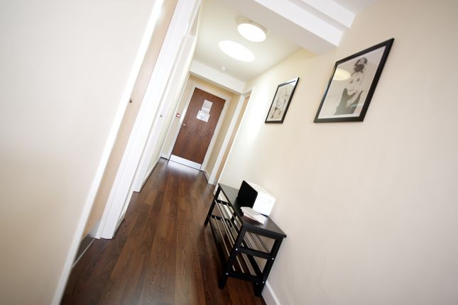 Thumbnail Flat to rent in Broomgrove Road, Collegiate, Sheffield