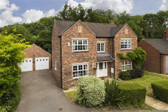 Thumbnail Detached house for sale in Pinfold Green, Staveley, North Yorkshire