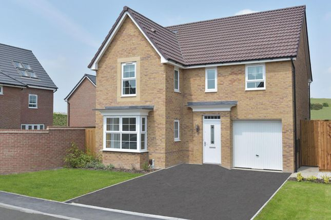 "Thumbnail Detached house for sale in ""Halstead"" at Weddington Road, Nuneaton"
