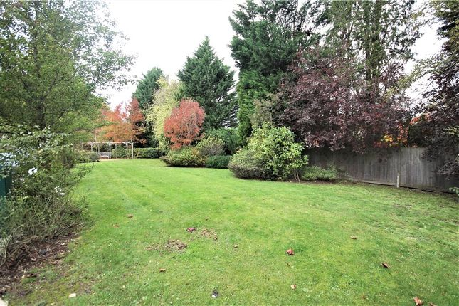 Communal Garden of London Road, Ascot, Berkshire SL5