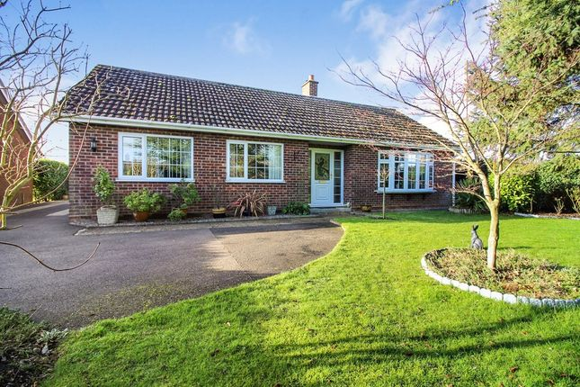 Thumbnail Detached bungalow for sale in Field Lane, Hempnall, Norwich