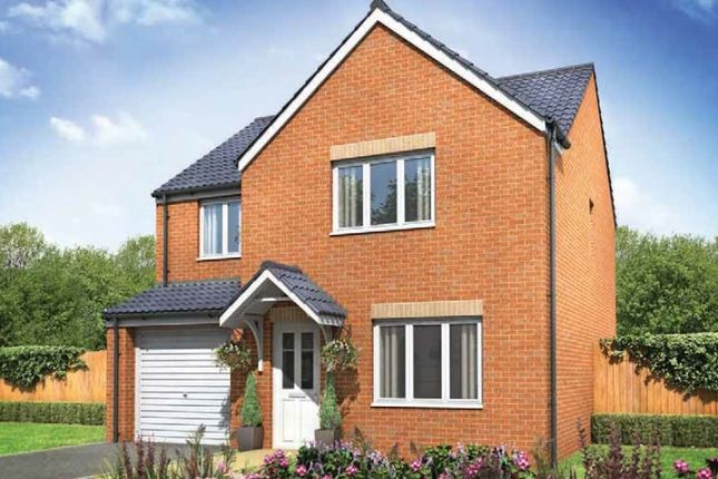 """Thumbnail Detached house for sale in """"The Roseberry"""" at Tachbrook Road, Whitnash, Leamington Spa"""