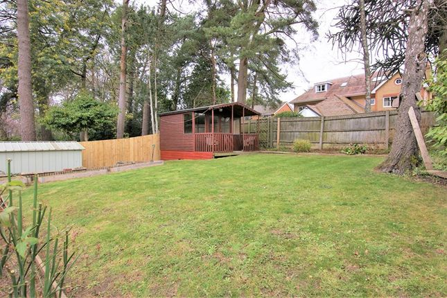 Thumbnail Bungalow for sale in Coventry Crescent, Poole, Dorset