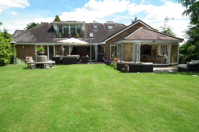 Thumbnail Detached bungalow for sale in Church Road, Little Berkhampsted