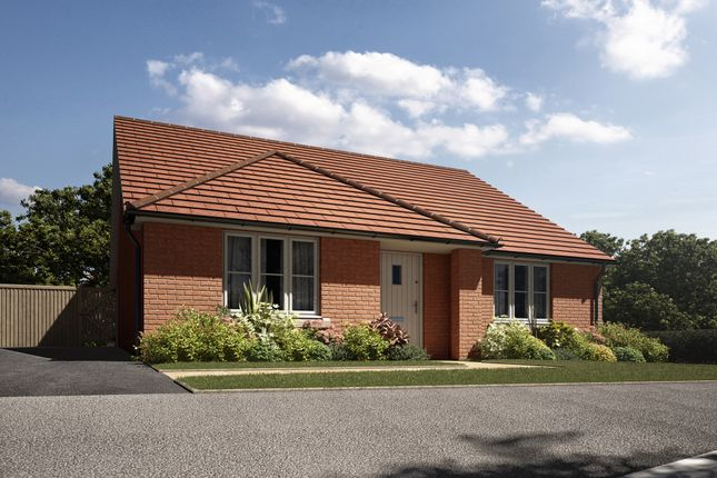 "Thumbnail Bungalow for sale in ""The Gosfield"" at Leverett Way, Saffron Walden"