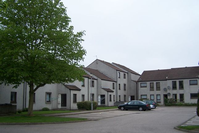 Flat to rent in Froghall Terrace, Aberdeen