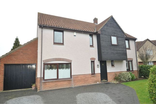 Thumbnail Detached house for sale in Redgates Place, Chelmsford, Essex