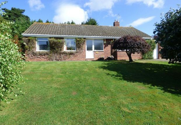 Thumbnail Detached bungalow for sale in Church Down Road, Malvern