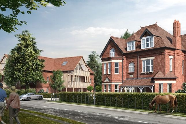 Thumbnail Property for sale in The Rise, Brockenhurst