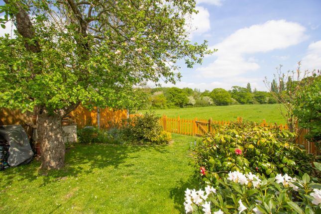 Garden of Telegraph Lane, Claygate, Esher KT10