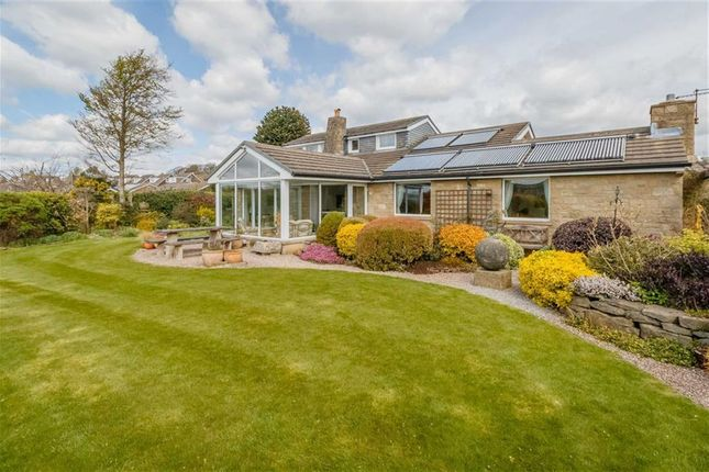 Thumbnail Detached bungalow for sale in 5, Hill Close, Salendine Nook