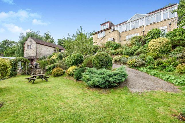 Thumbnail Detached house for sale in Ham Lane, Bowlish, Shepton Mallet