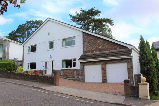 Thumbnail Detached house for sale in Palmyra Court, West Cross, Swansea