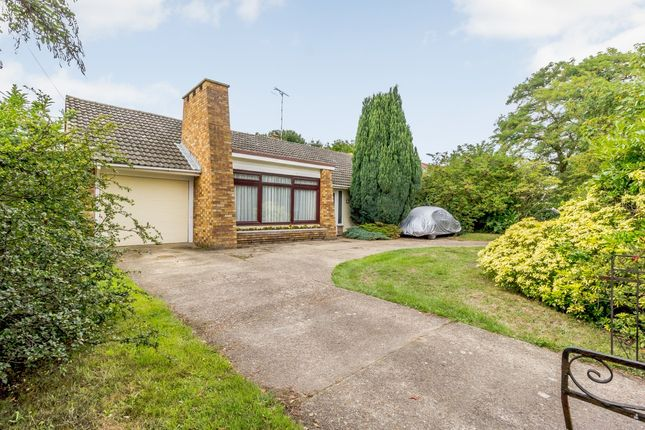 Thumbnail Detached bungalow for sale in Church Road, Burnham-On-Crouch, Essex