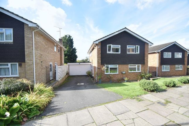 Thumbnail Detached house to rent in Chartwell Drive, Luton
