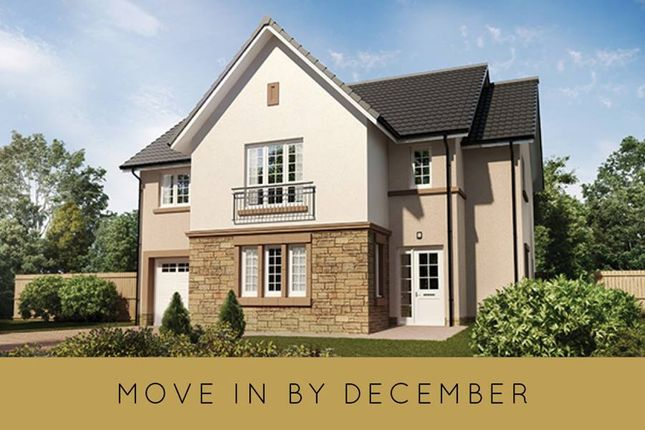 """Thumbnail Detached house for sale in """"The Cleland"""" at Hillview Gardens, Nivensknowe Park, Loanhead"""