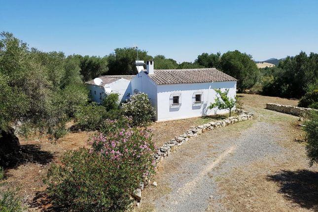 Little Farmhouse of Arcos De La Frontera, Arcos De La Frontera, Cádiz, Andalusia, Spain