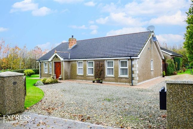Thumbnail Detached bungalow for sale in Bishops Court Road, Downpatrick, County Down