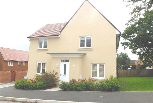 Thumbnail Property to rent in Raleigh Road, Yeovil