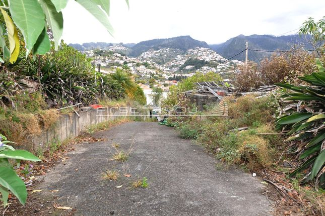 Land for sale in Funchal, Portugal