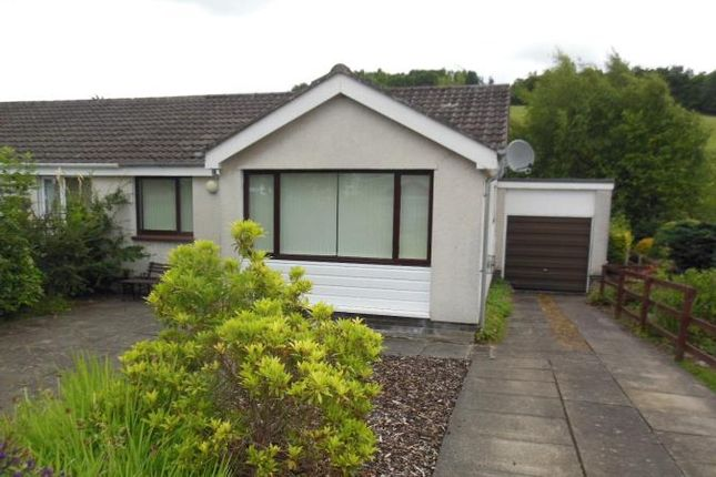 Thumbnail Semi-detached bungalow to rent in 9 Boyd Avenue, Crieff