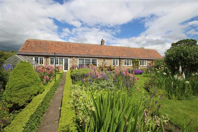 Thumbnail Cottage for sale in Kemping Moss, Lowick, Berwick Upon Tweed