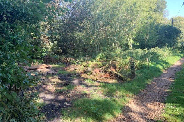 Thumbnail Land for sale in Land West Side Of Lythe Lane, Stroud, Petersfield, Hampshire