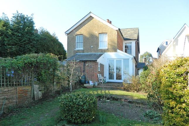 Thumbnail Semi-detached house to rent in Japonica, 7 Carron Lane, Midhurst