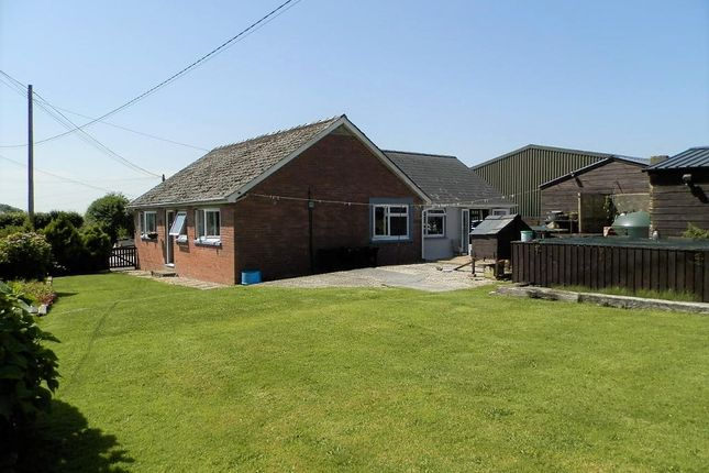 Thumbnail Detached bungalow for sale in Clynblewog, Between Tegryn And Trelech, Carmarthenshire