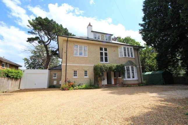 Thumbnail Detached house for sale in St Winifred's Road, Bournemouth