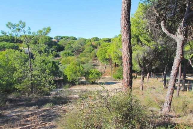 Thumbnail Land for sale in Vale De Lobo, Almancil, Loulé