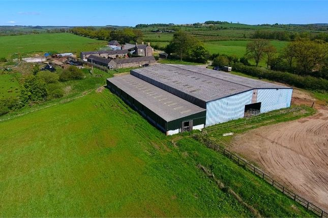 Thumbnail Land for sale in Stoneybrook Farm, Lees Hill, Brampton, Cumbria