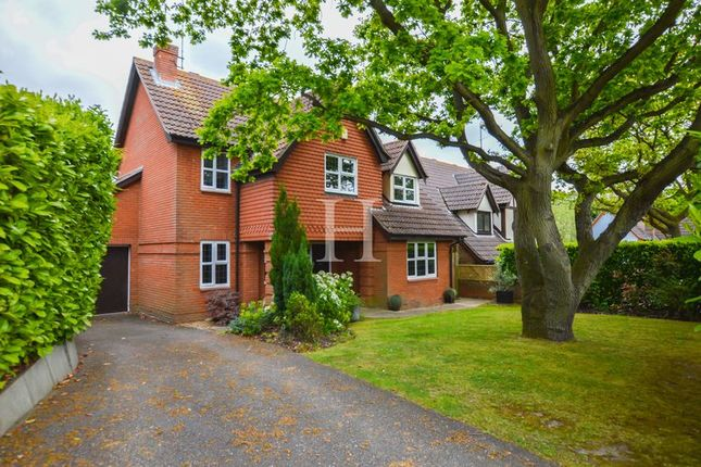 Thumbnail Detached house for sale in Sunny Road, Hockley, Essex