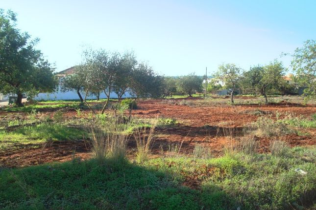 Land for sale in Almancil, Loulé, Portugal