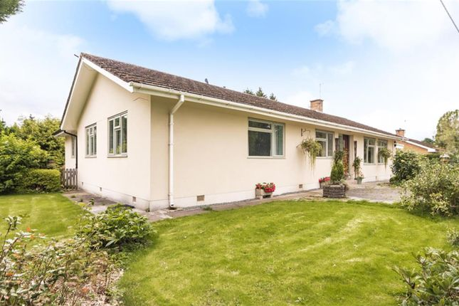 Thumbnail Bungalow for sale in Broadway, Builth Wells