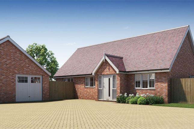Thumbnail Detached bungalow for sale in Plot 20 Springfield Meadows, Little Clacton, Essex