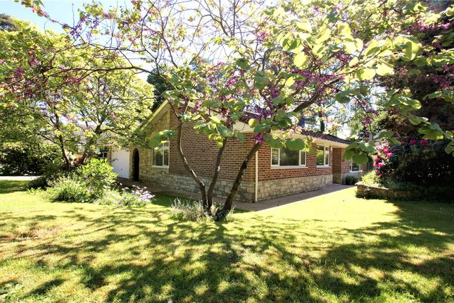Thumbnail Bungalow for sale in Widworthy Drive, Broadstone, Dorset