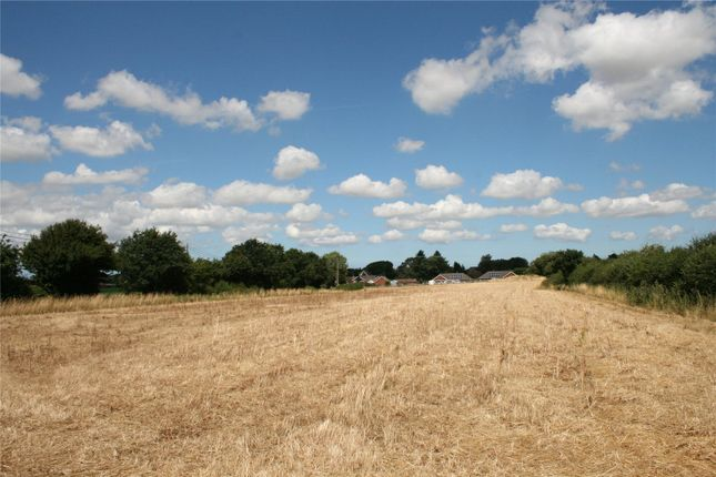 Thumbnail Land for sale in Norwich Road, Cawston, Norfolk