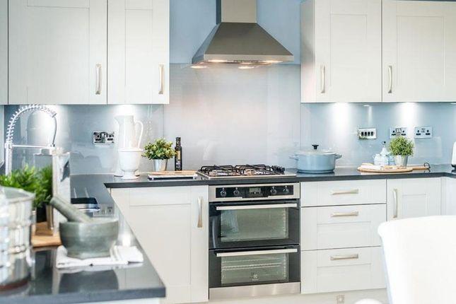 "4 bedroom detached house for sale in ""Cullen"" at Kildean Road, Stirling"