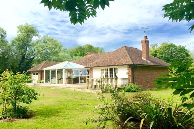 Thumbnail Bungalow for sale in Marsham Brook Lane, Pett Level, Hastings