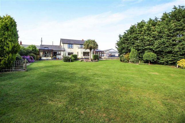 Thumbnail Detached house for sale in Hele Lane, Frithelstockstone, Torrington
