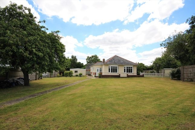 Thumbnail Detached bungalow for sale in Wimborne Road West, Wimborne